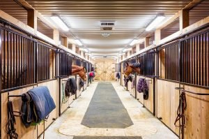 Horse stables with ceiling lighting